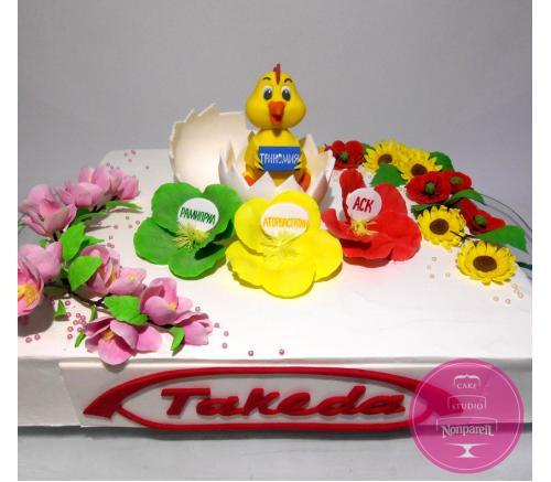Торт Корпоративный Takeda