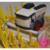 Торт Праздничный Для агронома