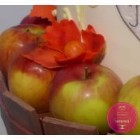 Торт Праздничный Бочёнок с яблоками